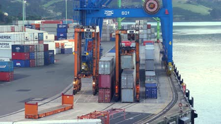vorkheftruck : Industrial port with containers, crane and loaders - March 2017: New Zealand