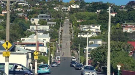 nový zéland : Baldwin Street, the steepest street in the world - March 2017: Dunedin, New Zealand