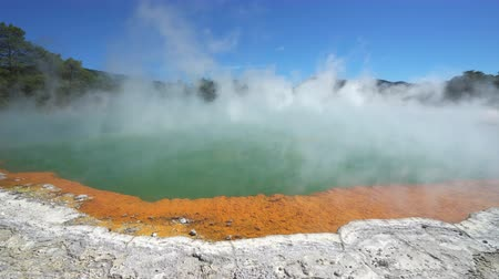 гейзер : Steaming boiled geothermal water - New Zealand, Rotorua, Waiotapu Стоковые видеозаписи