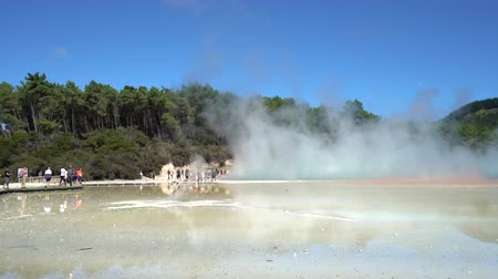 hotpot : Steam on boiled geothermal water - New Zealand, Rotorua, Waiotapu Stock Footage