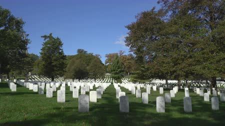 headstone : Military memorial cemetery - Arlington