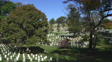 gravestone : Military memorial cemetery - Arlington