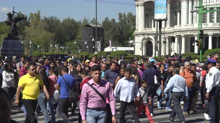 zebra : Mexico City downtown. Crowd of people, busy street scene