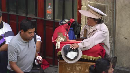 barril : Traditional Mexican street musician, organ grinder - Mexico City downtown