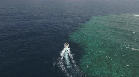 еж : Aerial shot of a speedy motorboat near to coral reef Стоковые видеозаписи