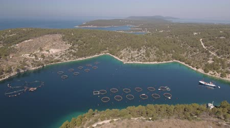 скумбрия : Aerial view of fish farm - Adriatic sea, Croatia Стоковые видеозаписи