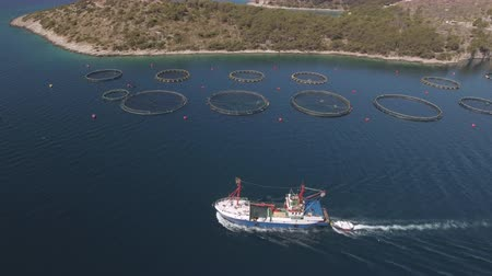 скумбрия : Aerial view of fish farm with cargo ship - Adriatic sea, Croatia