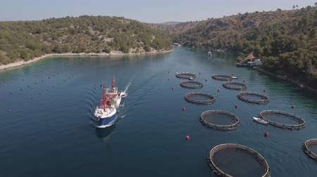 makrela : Aerial view of fish farm with cargo ship - Adriatic sea, Croatia