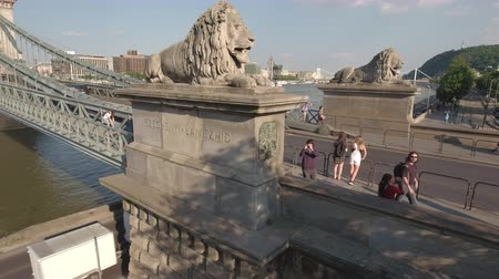 süspansiyon : Aerial view of Chain bridge and lions - Budapest, Hungary Stok Video