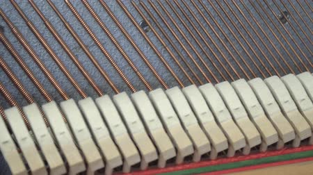 szakadt : Tuning Piano. Close up shot of tuning piano