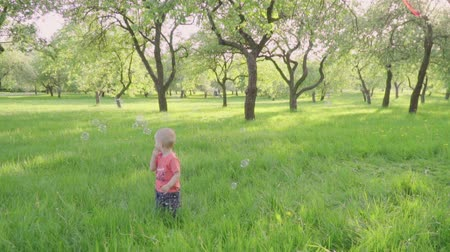 легкий : little boy looks at soap bubbles in park by parents hand. slow-mo