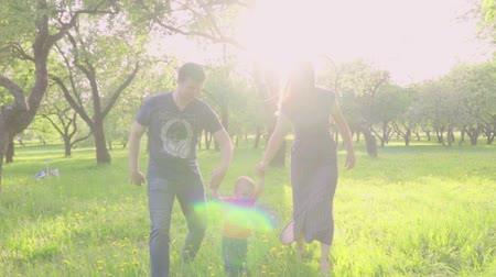 role model : Beautiful family enjoying summer day in the park: little baby learning how to walk with mom and dad helping him to make his first steps Stock Footage