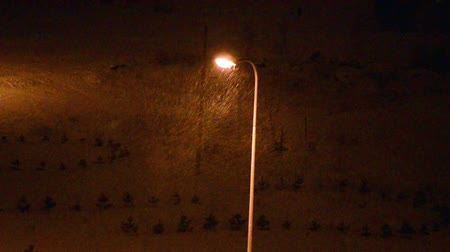rua : Street lighting pole in winter and snowflakes illuminated at night.