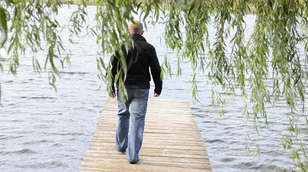 male animal : man walk on wooden lake bridge under willow tree and swan bird meet pugnacious angry.