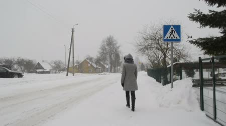 hóvihar : woman in grey coat walk through street on zebra crossing and car going in winter blizzard snowstorm snow fall.