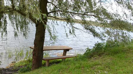 rekreasyon : lonely wooden bench under willow tree branch move in wind near ripple lake water.