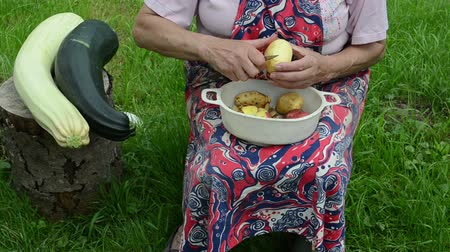 peeler : old woman with apron hands peel shave clean fresh potatoes with knife. natural zucchini on tree stump. Stock Footage