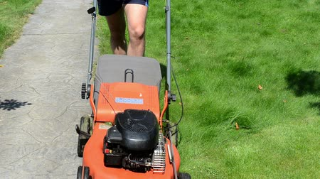 career path : gardener male man with shorts and flip-flop shoes push mower cut lawn grass near stone path. Stock Footage