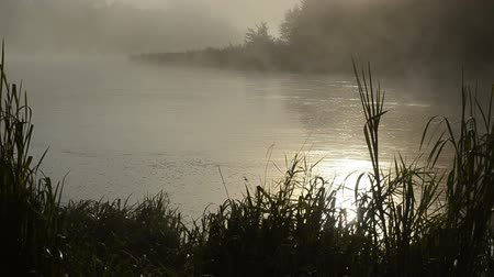 enevoado : early morning sunrise reflections in misty fog on flowing river water.