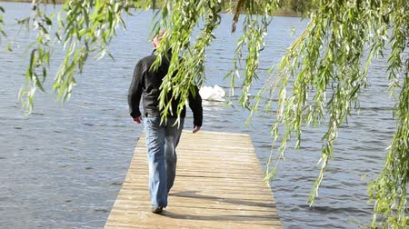 rekreace : man walk on wooden lake bridge under willow tree check water temperature and swan bird swim.