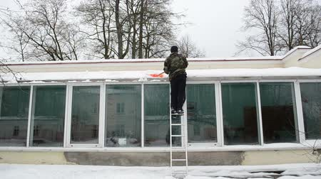 deep snow : worker man in camouflage on ladder clean snow from glass greenhouse house roof with orange plastic shovel tool in winter. Stock Footage