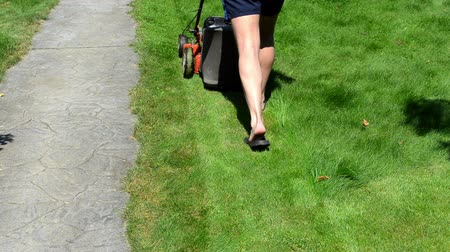 career path : gardener man with shorts and flip-flop shoes push mower cut lawn grass near stone path. Stock Footage