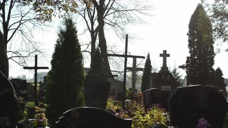 temető : graveyard cemetery monuments cross and thuja plant flowers on background of bright sky in autumn. Stock mozgókép