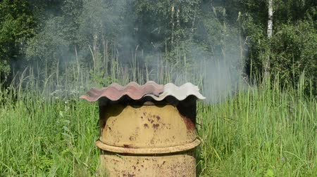 strawberry oil : smoke rise from old rural handmade rusty barrel smoke house asbestine slate roof.