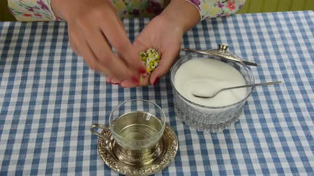 hot beverage : Girl hand pour camomile flower herb blooms to glass cup and sugar pot with lid. Healthy herbal tea prepare.