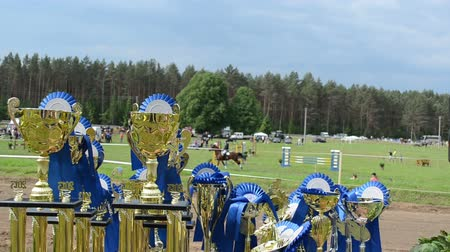 trofej : steeplechase horse race cups awards prepared for winners. Rider competition for champion prize.