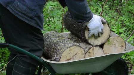 palivové dříví : Worker hands with gloves load firewood wood logs to wheelbarrow. Natural fuel prepare for winter.