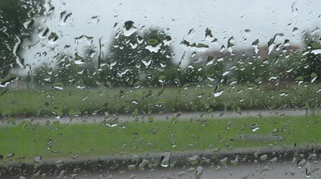 gota de chuva : Closeup of rain water drops on windscreen window.