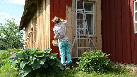 munkaruha : Painter worker woman paint rural garden house wooden wall with paintbrush brush in red color. Stock mozgókép