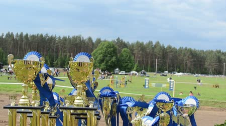 trofej : Horse race competition cups awards trophy prepared for winner near hippodrome.