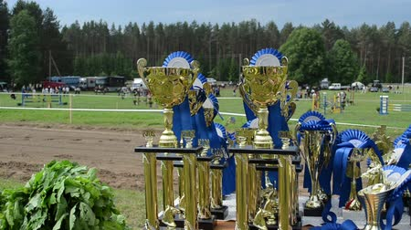 soška : NIURONYS, LITHUANIA - JUNE 01: Horse racing cups awards prepared for winners at celebration day of city on June 01, 2013 in Niuronys, Lithuania.