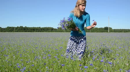 pulóver : Slim figure elegant lady woman in blue skirt and sweater pick bouquet of blue cornflower flowers in agricultural summer field. Stock mozgókép