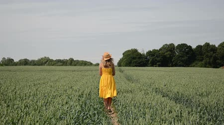 mavi arka : young farmer with a yellow dress and straw hat goes through the rye beaten path Stok Video
