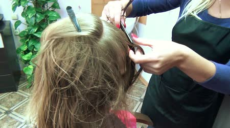 corte de cabelo : close up of hairdresser giving a new haircut to female