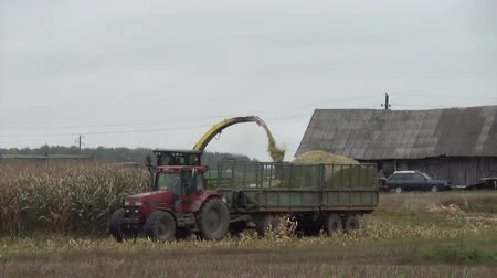 kombájn : Combine harvester load ripe corns into tractor trailer. Agricultural works in autumn.  Stock mozgókép