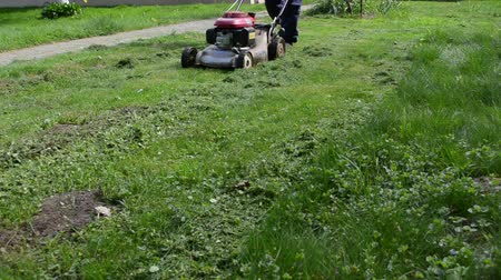 career path : man gardener worker cut lawn with grass cutter mower on sunny day.