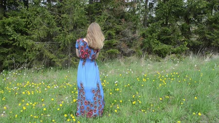 buço : Woman dressed in long blue dress blow sowthistle fluffy seeds. Vídeos