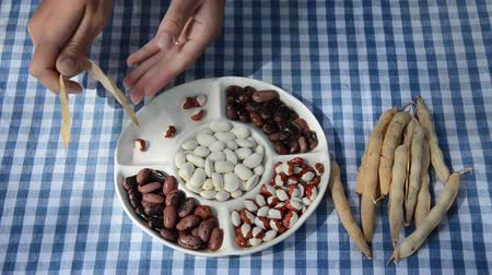 benekli : woman hand hull dried mottled legume from the pods into the dish with the compartments Stok Video