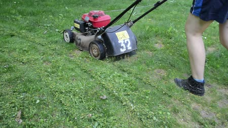 career path : Walking near woman cutting lawn with grass cutter mower on meadow.
