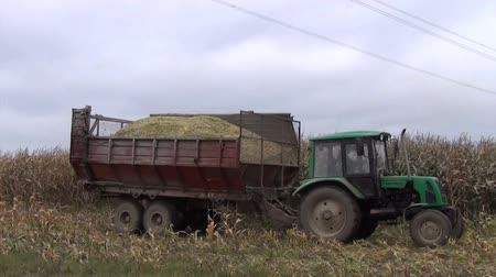 üretmek : Tractor with trailer full of freshly harvested ripe corn drive near field.