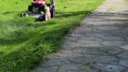 career path : meadow grass lawn cut with grass cutter mower near stone path in garden. Stock Footage