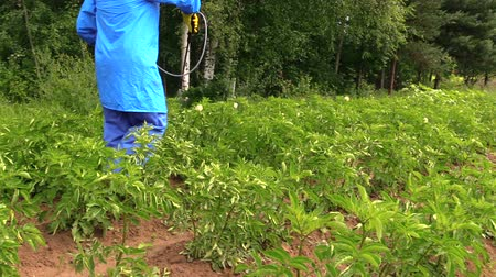püskürtücü : Gardener man spray vegetables in garden. Plant protection from weeds and insects.