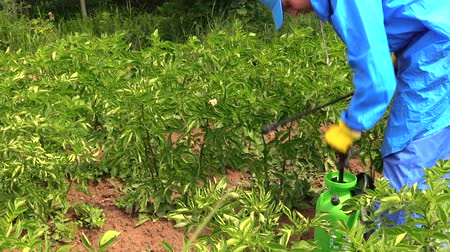 tecido : Farmer man in waterproof clothes pump sprinkler tool with herbicide for higher spray preassure between vegetable potato plants. Shot on Canon XA25. Full HD 1080p. Progressive scan 25fps. Tripod. Vídeos