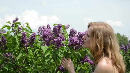 smell : Girl smell lilac tree blooms and smile with satisfaction.