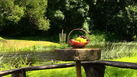 calcário : Basket with grape and peach fruits and glass with champagne cider on millstone table near river. Picnic in nature. Stock Footage