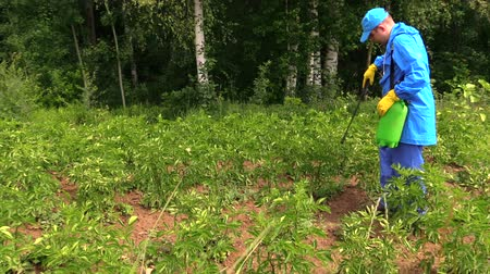 püskürtücü : Gardener man in waterproof work wear spray potato plants in garden with herbicide pesticide near birch tree forest.